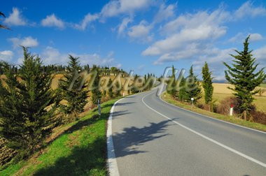 A scenic country road in the famous wine region of Chianti (Italy) Stock Photo - Royalty-Free, Artist: mizio1970                     , Code: 400-04288827