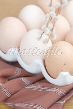 Brown chicken eggs in an egg holder and catkins. Shallow dof Stock Photo - Royalty-Free, Artist: ingridhs                      , Code: 400-04299853