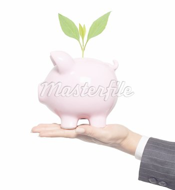 Protect your mone. Financial concept - piggy bank in woman hand Stock Photo - Royalty-Free, Artist: tetkoren                      , Code: 400-04311313
