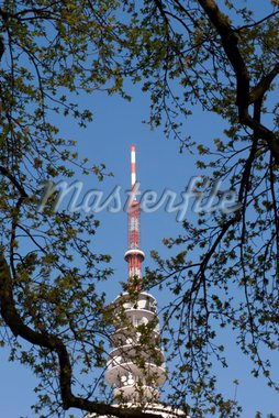 Hamburg Germany Television Tower: View from Botanic Garden. Stock Photo - Royalty-Free, Artist: A1B2                          , Code: 400-04366019