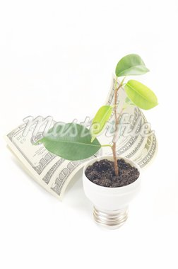 green sprout on bulb on the dollar Stock Photo - Royalty-Free, Artist: Draw05                        , Code: 400-04379788