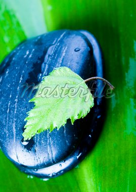 Zen is a freshness and the way of life. Stock Photo - Royalty-Free, Artist: JanPietruszka                 , Code: 400-04462517