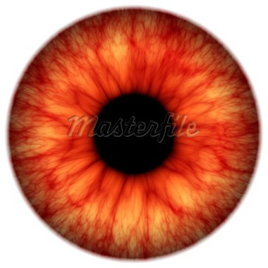 An illustration of a red spooky iris Stock Photo - Royalty-Free, Artist: magann                        , Code: 400-04593688