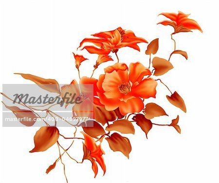 illustration drawing of red flower in a white background