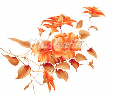 illustration drawing of red flower in a white background Stock Photo - Royalty-Free, Artist: bluesee                       , Code: 400-04697977