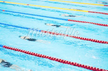 swimmers swimming in a pool Stock Photo - Royalty-Free, Artist: tarczas                       , Code: 400-04868487