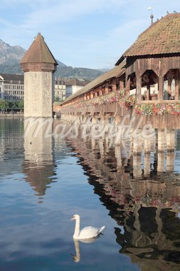 The Chapel Bridge and Lake Lucerne, in the city of Lucerne, Switzerland.  Photo taken early in the morning as the sun starts to rise.   Stock Photo - Royalty-Free, Artist: sumners                       , Code: 400-04878135