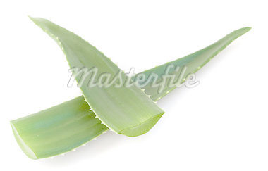 aloe vera green leaves isolated on white background Stock Photo - Royalty-Free, Artist: Little_Desire                 , Code: 400-04887108