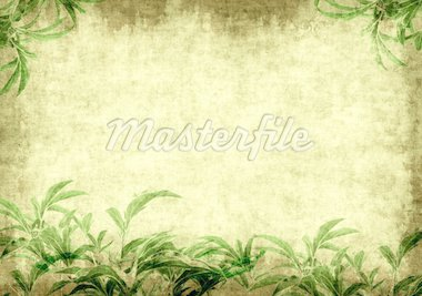 Grunge background - a sheet of the old paper with green leaves Stock Photo - Royalty-Free, Artist: frenta                        , Code: 400-04914458
