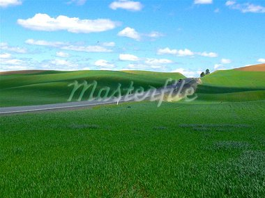 Palouse farm country Stock Photo - Royalty-Free, Artist: eternal                       , Code: 400-04969182