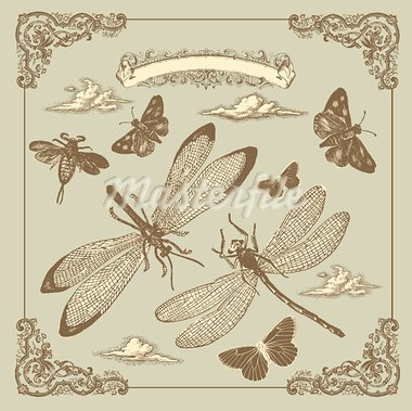 Retro card with butterflies Stock Photo - Royalty-Free, Artist: marinakim                     , Code: 400-05325833