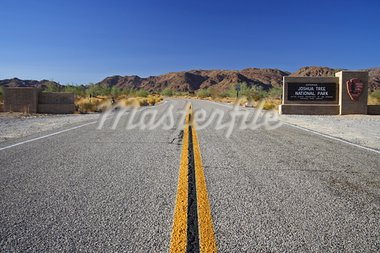 Scenic Joshua Tree National Park in California Stock Photo - Royalty-Free, Artist: Wilsilver77                   , Code: 400-05368166