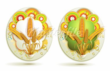 Wheat ears with colored circles Stock Photo - Royalty-Free, Artist: Merlinul                      , Code: 400-05386615