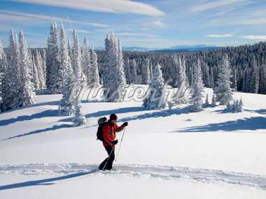 Senior man backcountry skiing Stock Photo - Premium Royalty-Freenull, Code: 6106-05441089
