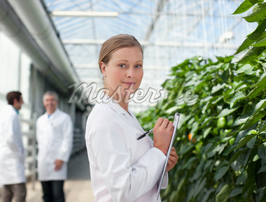 Scientist examining plants in greenhouse Stock Photo - Premium Royalty-Freenull, Code: 635-05550950