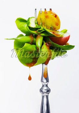 Fork with Salad Stock Photo - Premium Royalty-Free, Artist: John Cullen, Code: 600-05560193