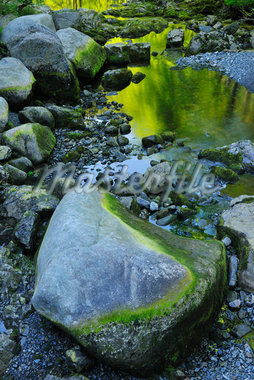 Stream, Harz National Park, Okertal, Oker, Lower Saxony, Germany Stock Photo - Premium Royalty-Free, Artist: Raimund Linke, Code: 600-05642052