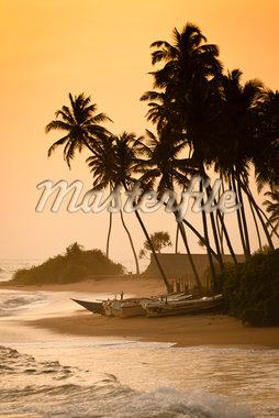 Beach at Ambalangoda, Galle District, Sri Lanka Stock Photo - Premium Rights-Managed, Artist: R. Ian Lloyd, Code: 700-05642569