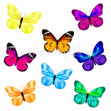 Butterfly Set, Isolated On White Background, Vector Illustration Stock Photo - Royalty-Free, Artist: adamson                       , Code: 400-05669232