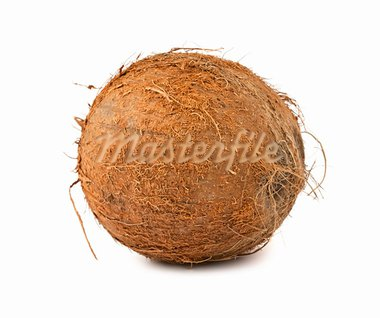 Single brown hairy coconut isolated on white background Stock Photo - Royalty-Free, Artist: Mbongo                        , Code: 400-05669895