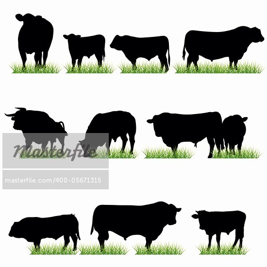Bulls silhouettes set Stock Photo - Royalty-Free, Artist: kaludov                       , Code: 400-05671315