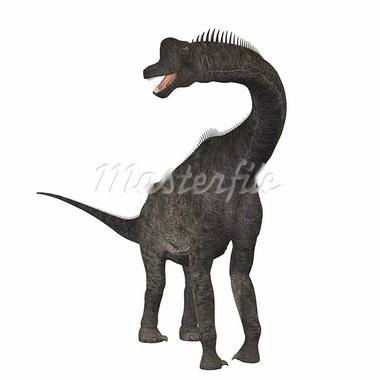 The Brachiosaurus dinosaur was a sauropod from the Jurassic Period. Its forelimbs were much longer then its hind limbs giving it the look of the modern giraffe. This herbivore browsed the treetops in North America. Stock Photo - Royalty-Free, Artist: Catmando                      , Code: 400-05672971