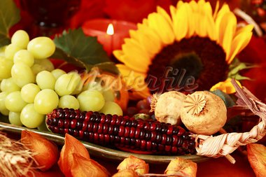 Still life and harvest or table decoration for Thanksgiving Stock Photo - Royalty-Free, Artist: Brebca                        , Code: 400-05674536