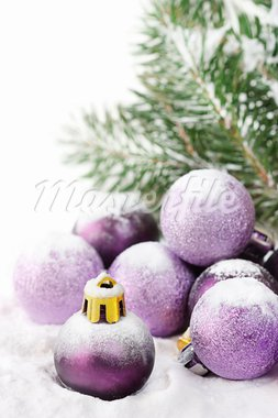 Fir and purple christmas baubles with snow. Stock Photo - Royalty-Free, Artist: lidante                       , Code: 400-05675852