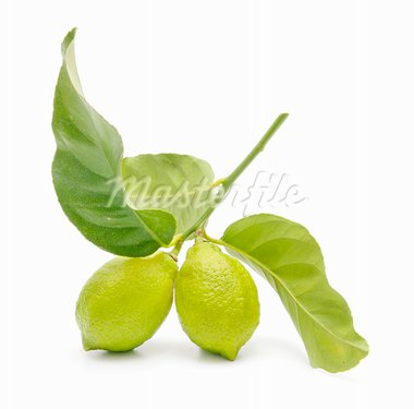 fresh lemon isolated on white background   Stock Photo - Royalty-Free, Artist: luiscar                       , Code: 400-05678420