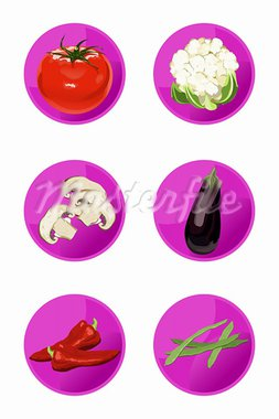 Vector vegetable icons isolated on white background Stock Photo - Royalty-Free, Artist: dayzeren                      , Code: 400-05678653
