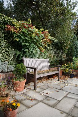 An informal English garden in autumn with traditional wooden bench, flagstones and terracotta plant pots Stock Photo - Royalty-Free, Artist: paulmaguire                   , Code: 400-05678813