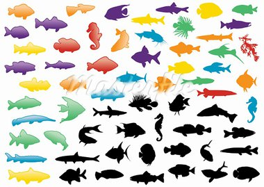 Illustration set of fish silhouettes. All objects are isolated and grouped. Colors and transparent background color are easy to adjust. Stock Photo - Royalty-Free, Artist: bytedust                      , Code: 400-05679518