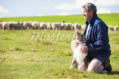 Farm Worker With Flock Of Sheep Stock Photo - Royalty-Free, Artist: MonkeyBusinessImages          , Code: 400-05686393