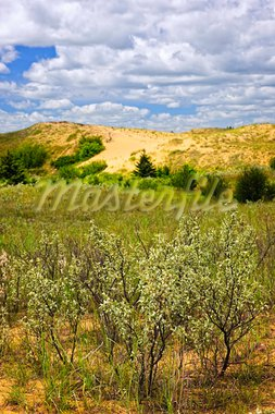 Landscape of Spirit Sands dunes in Spruce Woods Provincial Park, Manitoba, Canada Stock Photo - Royalty-Free, Artist: Elenathewise                  , Code: 400-05695796