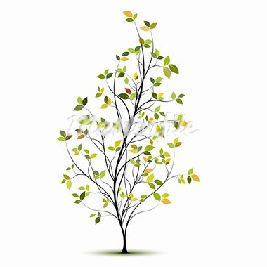 yound green tree silhouette with leaves and shadow Stock Photo - Royalty-Free, Artist: olivier26                     , Code: 400-05704843
