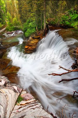 Beautiful waterfall flows through the pine forests of Glacier National Park in Montana. Stock Photo - Royalty-Free, Artist: Wirepec                       , Code: 400-05705151