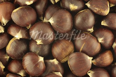 Chestnuts Texture Stock Photo - Royalty-Free, Artist: Georgios                      , Code: 400-05708251