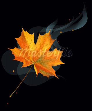Realistic orange autumn maple leaf on black background. Stock Photo - Royalty-Free, Artist: tatianat                      , Code: 400-05712126