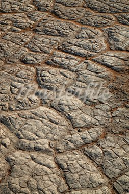 Close-up of pan without water in the Sossusvlei sand dunes in Namibia Stock Photo - Royalty-Free, Artist: watchtheworld                 , Code: 400-05712951