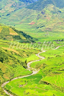 Mountain valley with a river flowing among rice fields Stock Photo - Royalty-Free, Artist: GoodOlga                      , Code: 400-05722882