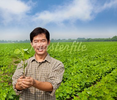portrait of a asian farmer Stock Photo - Royalty-Free, Artist: tomwang                       , Code: 400-05724086