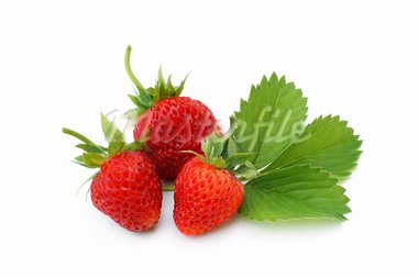Fresh strawberries with leaves on a white background Stock Photo - Royalty-Free, Artist: popovaphoto                   , Code: 400-05728350