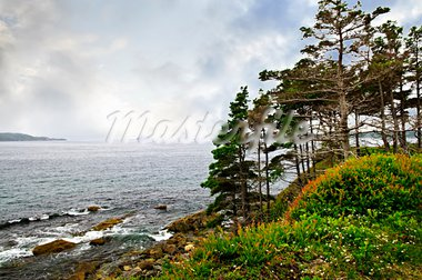 Scenic coastal view of rocky Atlantic shore with trees in Newfoundland, Canada Stock Photo - Royalty-Free, Artist: Elenathewise                  , Code: 400-05731744