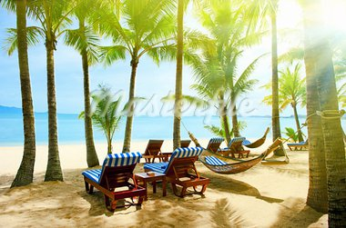 Holidays. Empty hammock between beautiful palm trees Stock Photo - Royalty-Free, Artist: Vixit                         , Code: 400-05738556