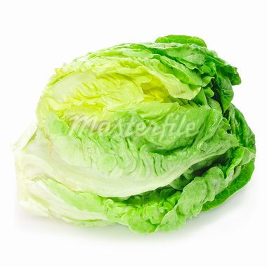 an iceberg lettuce on a white background Stock Photo - Royalty-Free, Artist: nito                          , Code: 400-05739586