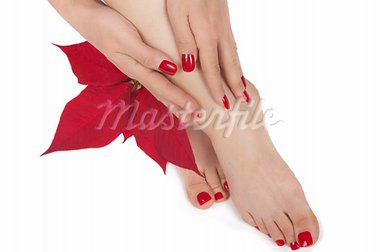 Christmas spa with manicured hands and pedicured feet Stock Photo - Royalty-Free, Artist: BVDC                          , Code: 400-05743516