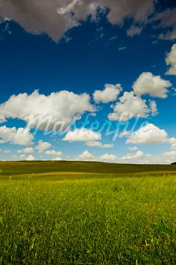 Beautiful green meadow with a great cloudy sky Stock Photo - Royalty-Free, Artist: iko                           , Code: 400-05750469