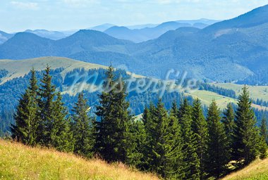 Summer mountain landscape with flowering grassland in front Stock Photo - Royalty-Free, Artist: Yuriy                         , Code: 400-05750743