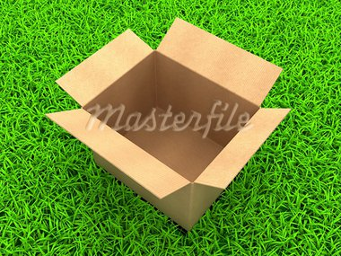 3D Illustration Opened cardboard box on Green Grass Stock Photo - Royalty-Free, Artist: tashatuvango                  , Code: 400-05751327