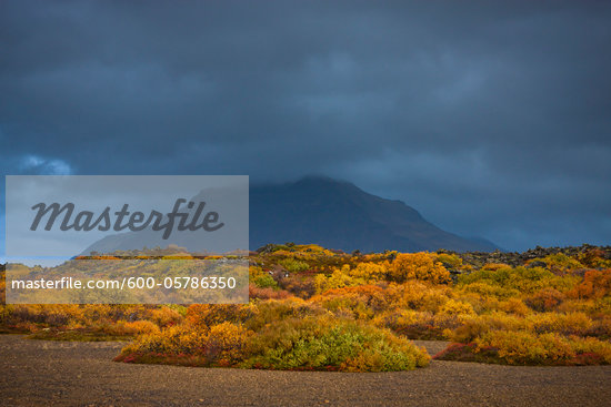 Autumn Landscape, Vesturland, Iceland Stock Photo - Premium Royalty-Free, Artist: Atli Mar Hafsteinsson, Code: 600-05786350